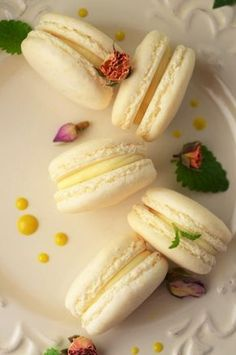 Macarons, Baby Food Recipes, Cake Recipes, Dessert Recipes, Easy Desserts, Delicious Desserts, Albanian Recipes, Romanian Desserts, Good Food