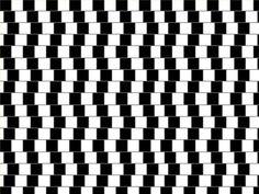 Egyenesek ezek a vonalak vagy görbék?