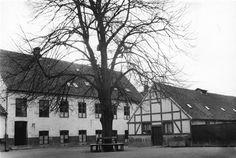 Søndergade 5, gården med stort lindetræ i midten. Registrant Vesterbro: Giersings Realskole grundlagdes i sidehuset mellem gårdene Søndergade 5 og 7, her set fra portgennemkørslen i nr. 5.