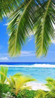 Jamaica Vacation, Beach Wallpaper, Wallpaper Wallpapers, Tropical Beaches, Island Beach, Small Island, Tropical Paradise, Paradise Beaches, Beach Scenes