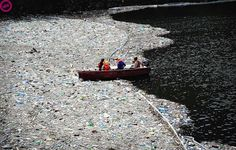 Great Pacific Garbage Patch. 3.5 million tons of trash, mostly plastic, covering an area twice the size of Texas, floating in the Pacific Ocean.