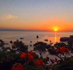 Alba a Giardini Naxos. #springinsicily #nature  #colorsofsicily
