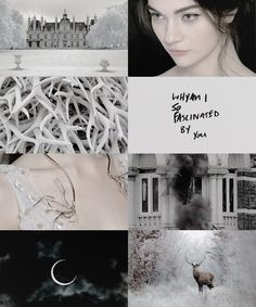 """cassiopheias:  character aesthetics → alina starkov  """"They wanted a Grisha queen. Mal wanted a commoner queen. And what did I want? Peace for Ravka. A chance to sleep easy in my bed without fear. An end to the guilt and dread that I woke to every morning. There were old wants too, to be loved for who I was, not what I could do, to lie in a meadow with a boy's arms around me and watch the wind move the clouds."""""""
