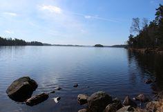 Immeln Sverige - marts 2016