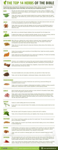 Top 14 Herbs of the Bible #herbalremediesrecipes
