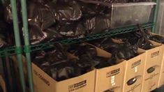 Killingworth restaurant delivers 600 meals to elderly community social-distancing during coronavirus crisis News 8, Warm Food, Community, Restaurant, Meals, Nice, Cooking, People, Kitchen