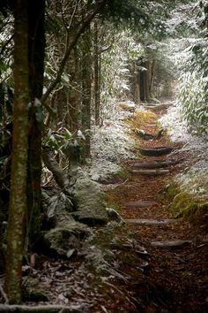 Snowy, Smokey Mountains Trail | Flickr - Photo Sharing!
