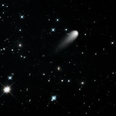Preparing for Comet ISON / Originating from the Oort Cloud, a repository of icy bodies billions of kilometres from the Sun, ISON is on a path that will bring it within grazing distance – million kilometres – above the Sun's visible surface on 28 November. Space Tourism, Space Travel, Oort Cloud, Astronomy Science, Hubble Space Telescope, Astrophysics, Nbc News, Activities, Bodies
