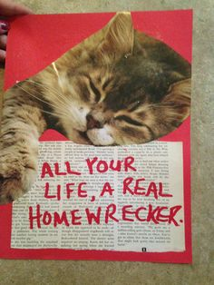 CAT ART with lyrics by The Muffs by TheEscapistArtist on Etsy, $7.00