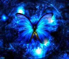 Magical Blue Butterfly