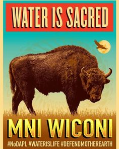 Powerful piece by Yaqui artist Ernesto Yerena Photo by Josué Rivas Fotographer Native Indian, Native Art, Native American History, Native American Indians, Beautiful Posters, Indigenous Art, It Goes On, First Nations, Bison