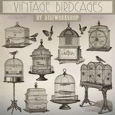 Birdcage Clip Art: Vintage Birdcages retro digital by DigiWorkshop