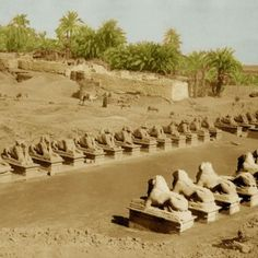 "Archaeologists in Egypt are excavating the first stretch of a two-mile avenue lined with hundreds of carved sphinxes.  Reportedly, this ""Avenue of the Sphinxes"" was built more than 3,000 years ago."