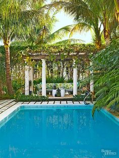 Surrounded by exotic palms, a pergola-capped seating area, and a simple tiled deck, this pool appears to be one with the landscape. Dense vines grow across the pergola to enhance the structure's shade-producing qualities. The foliage and tile colors complement the pool's blue-tiled interior, which mirrors sea and sky hues.