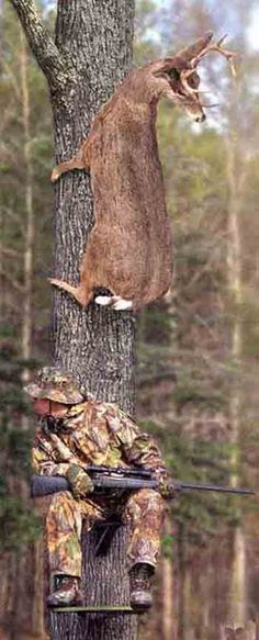 Deer Hunting  HaHa ...... Every hunter needs a laugh.--So that's why we didn't get a deer this year. : )