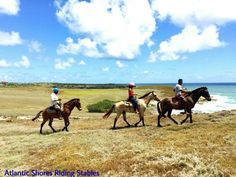 Family adventure in St.Lucia with our horses