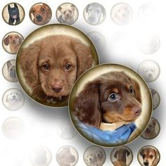 1 inch circle art downloads digital collage sheet bottle cap images jewelry making paper supplies dog puppy graphics