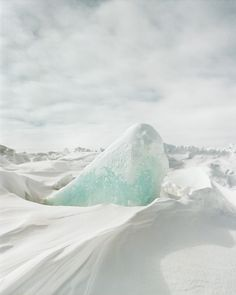 Photography by Clayton Cotterell | Art Sponge