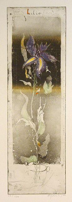 Lilie Iris 2004 by Alexander Befelein