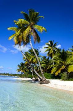 CUBA - Santa Lucia.Una splendida spiaggia di sabbia bianca. #evolutiontravel #diving #cuba