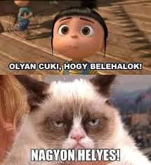 - Best funny memes humor disney grumpy cat Ideas The post Best funny memes humor disney grumpy cat Ideas appeared first on Cat Gig. Best funny memes humor disney grumpy cat Ideas - Grumpy Cat - Ideas of Grumpy Cat New Funny Pics, Cat Jokes, Funny Jokes To Tell, Grumpy Cat Humor, Funny Pictures, Grumpy Kitty, Grumpy Cat Disney, Cats Humor, School Pictures