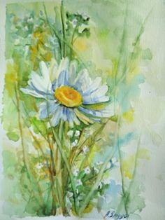 Watercolor flowers. Original watercolor painting. Camomile. field herbs
