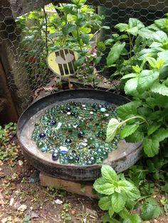 Bee Watering Hole Wildlife Gardening