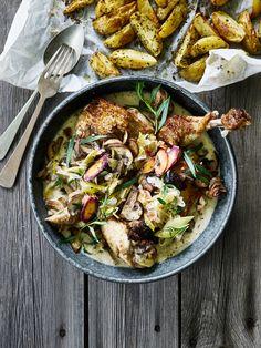 Her får du opskriften på en god gryderet med saftig kylling i hvidvin og estragon serveret med sprøde hjemmelavede pommes frites.