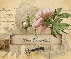 Vintage printable Lace, Rose, Key