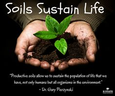 1000 images about year of the soils on pinterest food