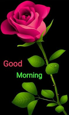 Very good morning Good Morning God Quotes, Good Morning Sister, Good Morning Beautiful Images, Good Morning Roses, Beautiful Love Pictures, Morning Greetings Quotes, Good Morning Photos, Good Morning Messages, Morning Prayers