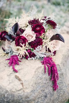 Quicksand roses, calla lilies, ranunculus, amaranths, dahlias. Love the dark contrast