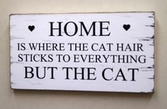 fun-cat-hair-chic-shabby-plaque-vintage-sign-boutique