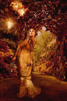 The Faerie Grove, Howard David Johnson