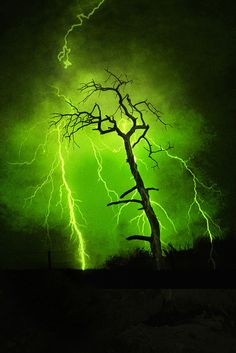 Mother Nature Green With Envy...8 Dead Trees In Fire Scarred High Ridges of NW Nebraska