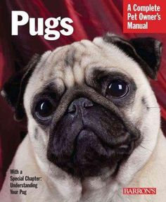 Pugs (Paperback) | Overstock.com Shopping - The Best Deals on Dogs