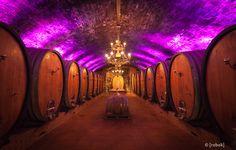 Weinkeller Winzer Sommerach #wine #architecture