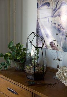 quartz terrarium