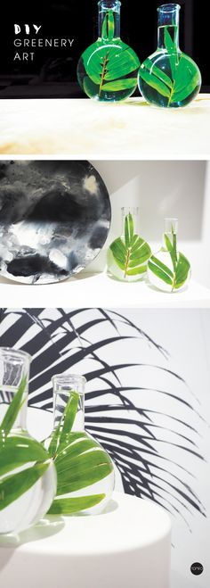 Diy glass greenery art in a round flask | TOMFO