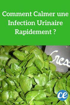 Comment Calmer une Infection Urinaire Rapidement ?