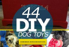 diy-dog--toys-homemade-boredom-busters-featured-image