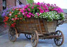 Love this wagon