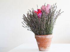 Duftsäckli mit Lavendel