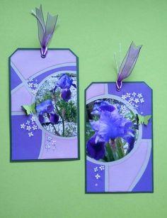 """Tags """"Iris"""""""