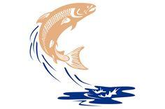 Atlantic Salmon Fish Jumping Water I - Illustrations - 1