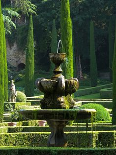 Giusti Palace Garden, Verona, Italy ~ one the best Renaissance age gardens in Europe, first laid out in the 1580s. Photo: Amy Coady