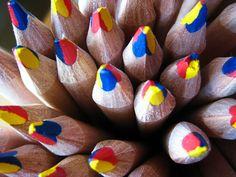 Colour   Primary