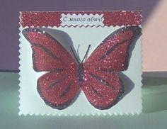 Butterfly, Meat, Blog, Bowties, Caterpillar, Butterflies