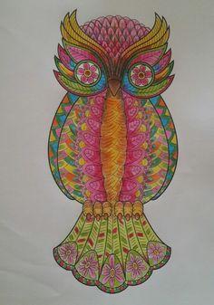 Renkli baykus