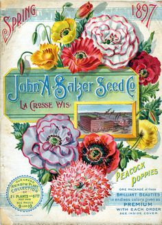 Peacock Poppies Vintage Packaging: Flower Seed Packets from the 1800s - The Dieline - The #1 Package Design Website -